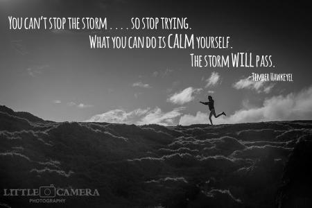 Sarah Michelle Storm Quote